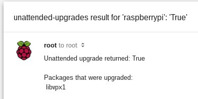 Updates email from Raspberry Pi
